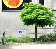 Behindertenparkplatz im Hof
